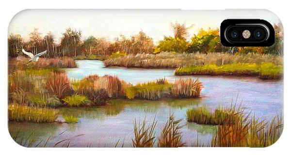 iPhone Case - Wanchese Marsh by Karen Langley