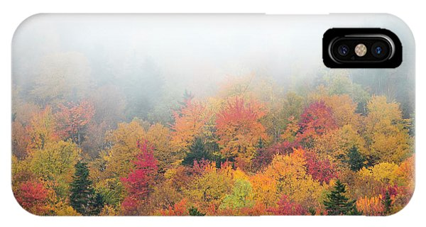 iPhone Case - Warm Autumn Colors Blanket The Tree by Robbie George