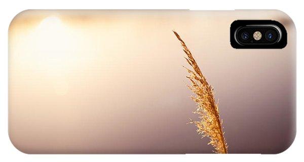 Nikon iPhone Case - Warmth by Michael Ver Sprill