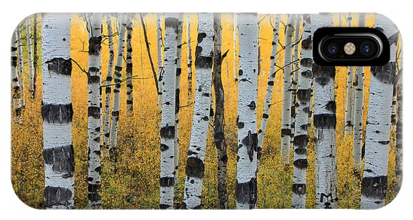 Autumn iPhone Case - Wasatch Aspens by Johnny Adolphson