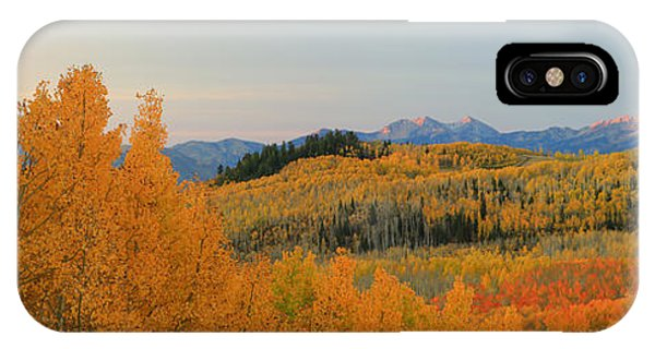 Wasatch Gold IPhone Case
