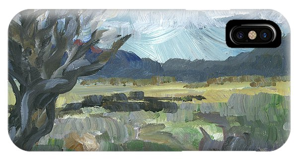 Washoe Valley Phone Case by Susan Moore
