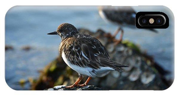 Watchbirds IPhone Case