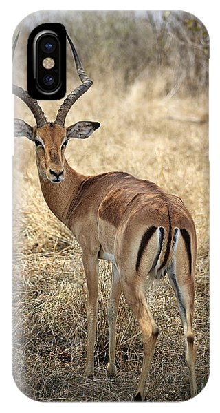 Watchful Impala IPhone Case