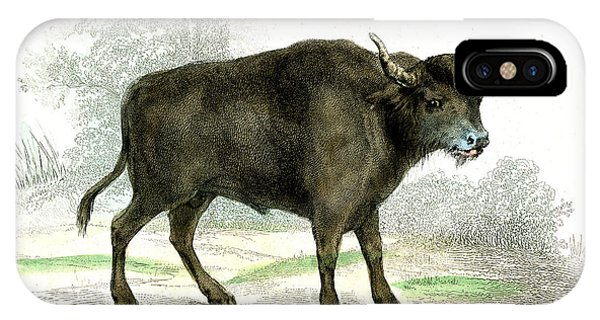 Water Buffalo Phone Case by Collection Abecasis