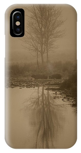 Water Buffalo Morning Fog Phone Case by Frank Feliciano