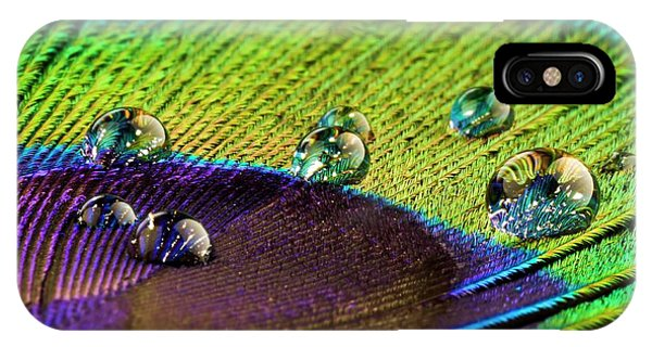 Peafowl iPhone Case - Water Droplets On Peacock Feather by Science Photo Library