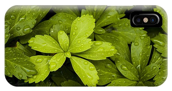 Water Drops New Growth IPhone Case