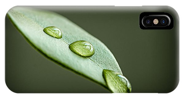 Leaf iPhone Case - Water Drops On Green Leaf by Elena Elisseeva