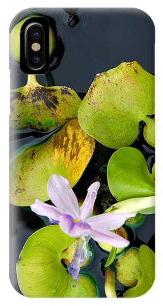 Water Flower IPhone Case