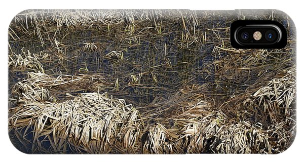 Dried Grass In The Water IPhone Case