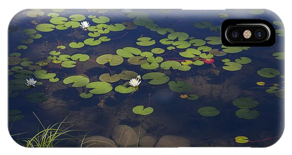 IPhone Case featuring the photograph Water Lilies by Fran Riley