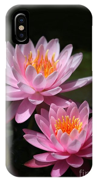 Water Lilies Love The Sun IPhone Case
