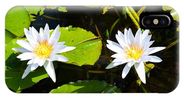 Water Lilies With Lily Pads In A Pond IPhone Case