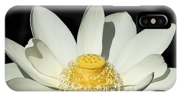 Water Lilly IPhone Case