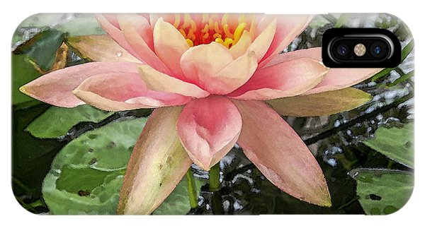 Water Lily 1 IPhone Case