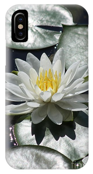 Water Lily II IPhone Case