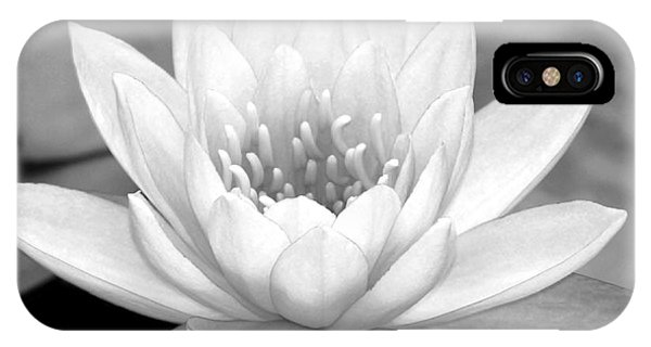 Water Lily In Black And White IPhone Case