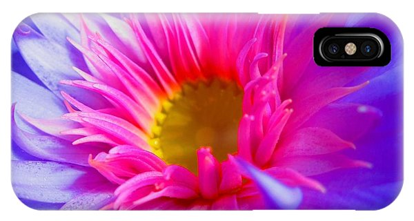 Water Lily Vibrant IPhone Case