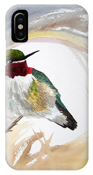 Watercolor - Broad-tailed Hummingbird IPhone Case