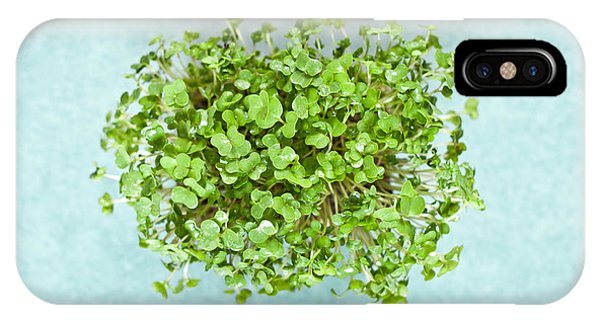 Well Being iPhone Case - Watercress by Tom Gowanlock