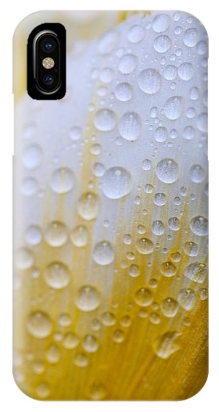 Waterdrops On Tulip IPhone Case