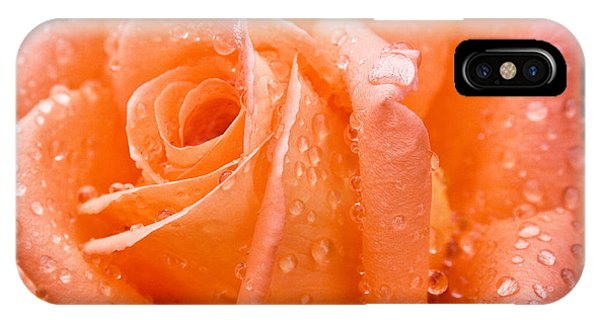 Watered Rose IPhone Case