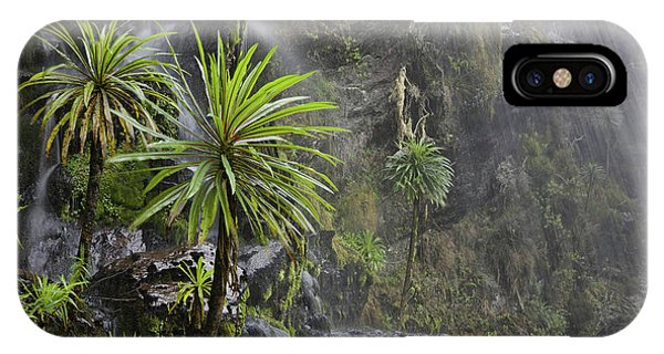 East Africa iPhone Case - Waterfall At Mount Stanley, Ruwenzori by Martin Zwick