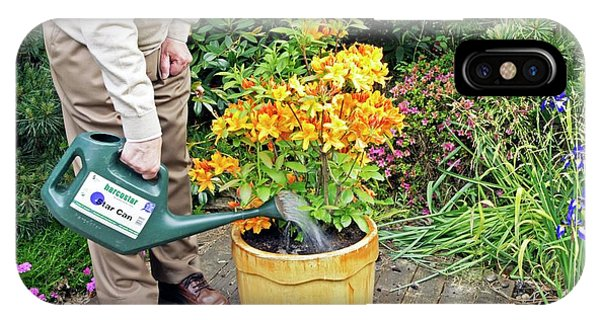 Golden Gardens iPhone Case - Watering A Rhododendron by Anthony Cooper/science Photo Library