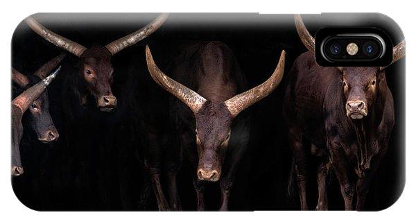 Horn iPhone Case - Watusi Family by Xavier Ortega
