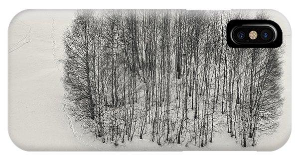 Birch Tree iPhone Case - We Can't Dance by Mihai Ian Nedelcu