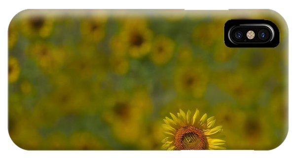 We Worship The Sun IPhone Case