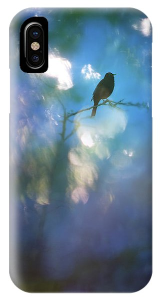 Weather To Fly  IPhone Case