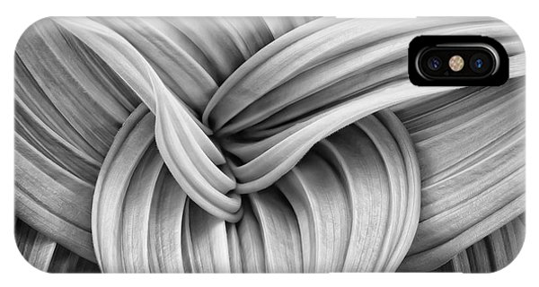 Web And Flow IPhone Case