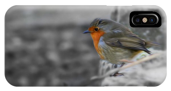 Wee Robin IPhone Case