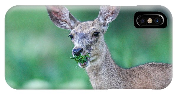 Weed Deer IPhone Case