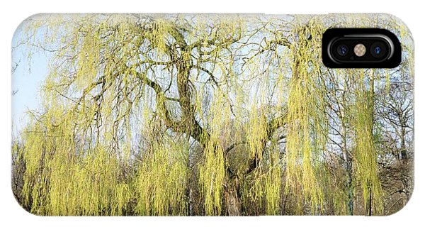 Weeping Willow Tree Phone Case by Anthony Cooper/science Photo Library