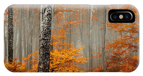 Welcome To Orange Forest IPhone Case