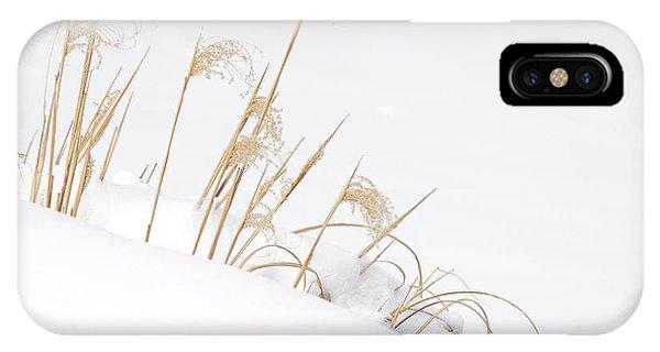 West Falls Winter Grass IPhone Case