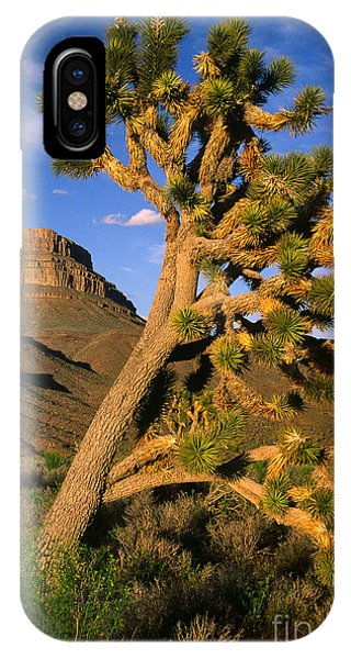 Grand Canyon iPhone Case - West Grand Canyon by Inge Johnsson