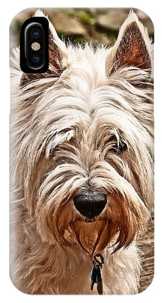 West Highland White Terrier IPhone Case