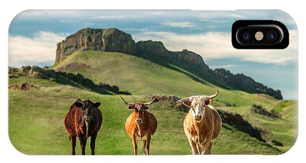 Western Longhorns IPhone Case