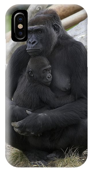 Western Lowland Gorilla Mother And Baby IPhone Case
