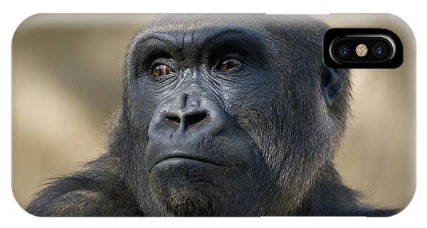 Western Lowland Gorilla Portrait IPhone Case