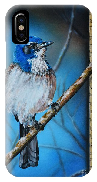 Western Scrub Jay IPhone Case