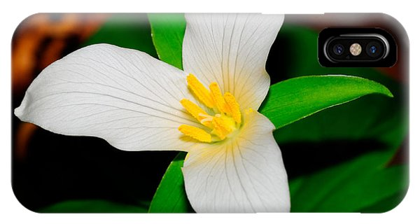 Western White Trillium IPhone Case