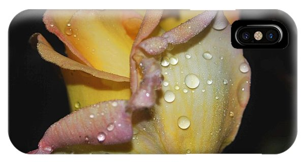 IPhone Case featuring the photograph Wet And Wonderful by Judy Hall-Folde