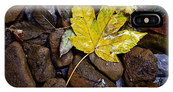 Wet Autumn Leaf On Stones IPhone Case
