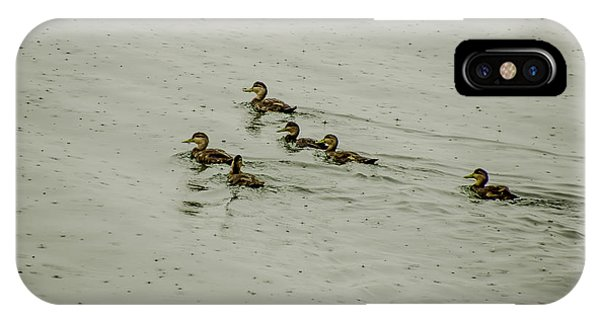 Wet Ducks In Water IPhone Case