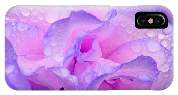 Wet Rose In Pink And Violet IPhone Case